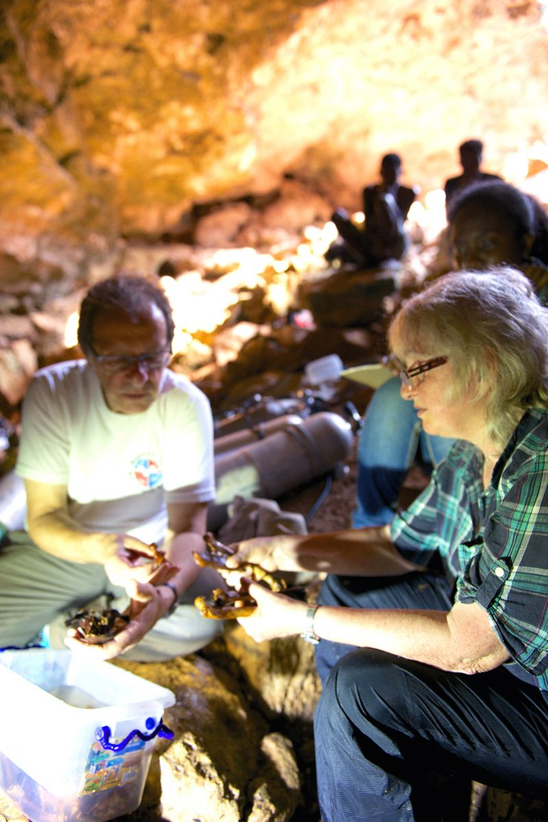 Researchers with fossils in Madagascar